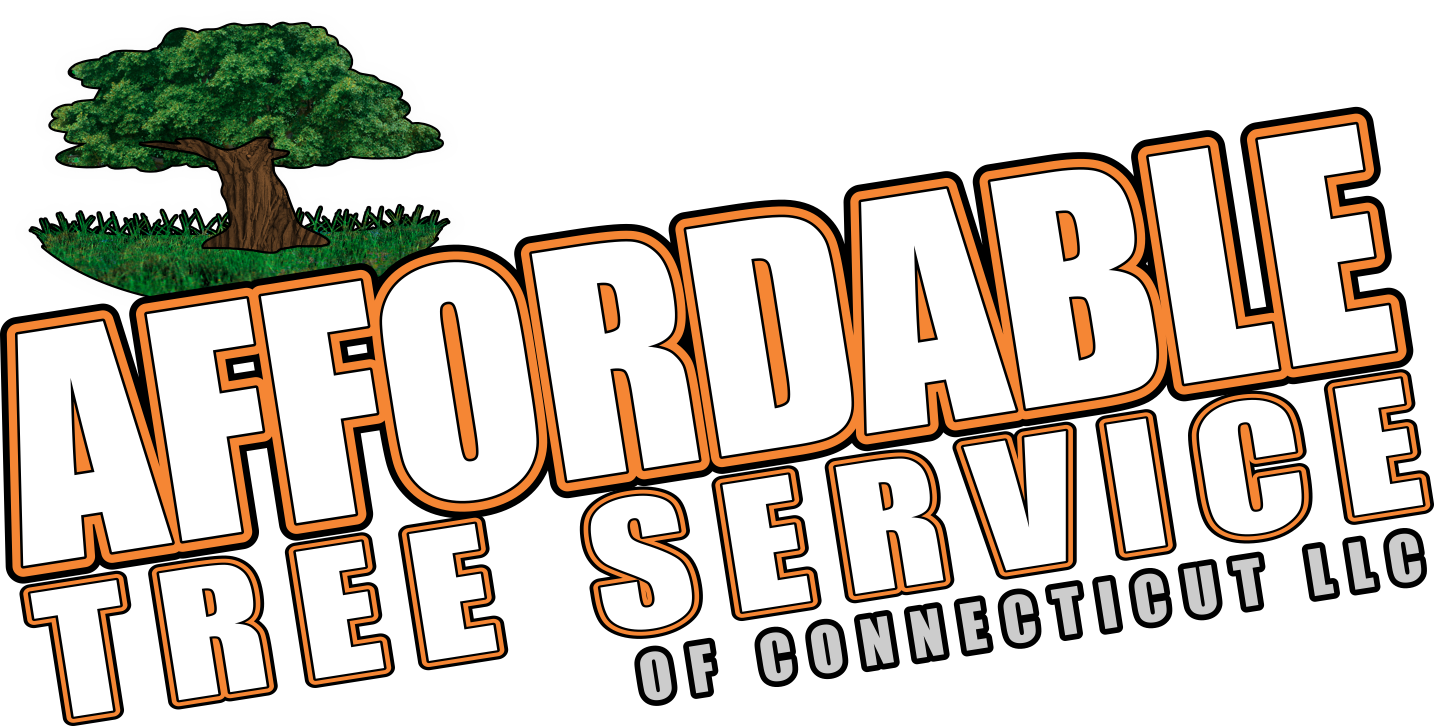 Affordable Tree Service of CT, llc